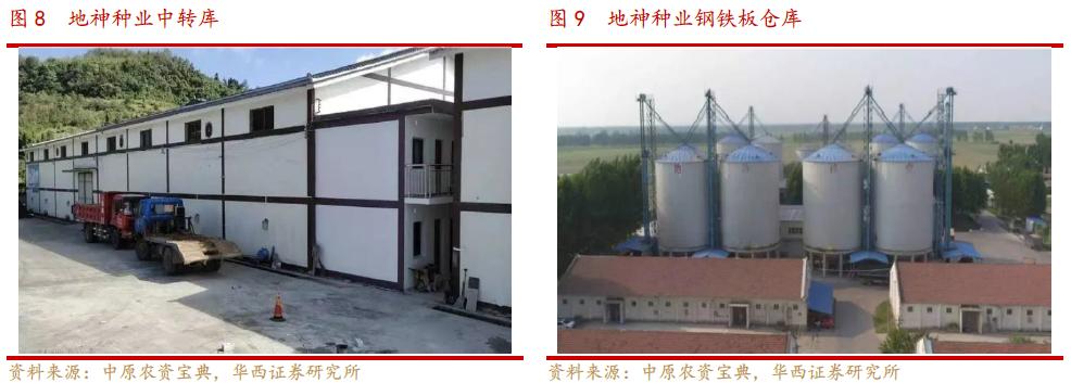 【华西农业】农发种业(600313):酒粮占比虽小,未来高成长可期插图5